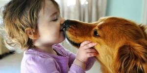 Токсокароз-у-детей-симптомы-и-лечение-660x330